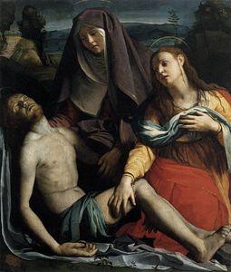 Michelangelo pieta reference